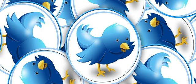 Twitter buttons with birds