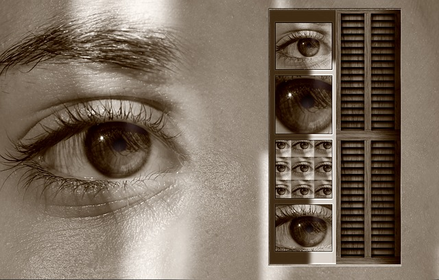eyes-141363_640
