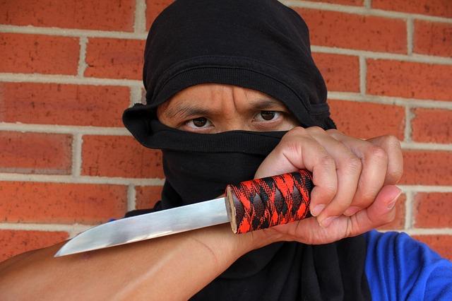 ninja-877220_640